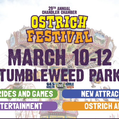 ostrich festival 2017 poster